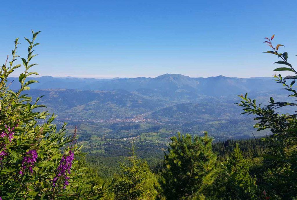 View over Borsa, Maramures County
