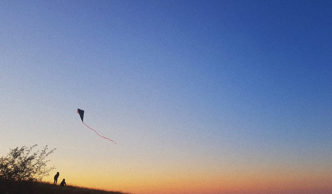 people playing with a kite on a hill