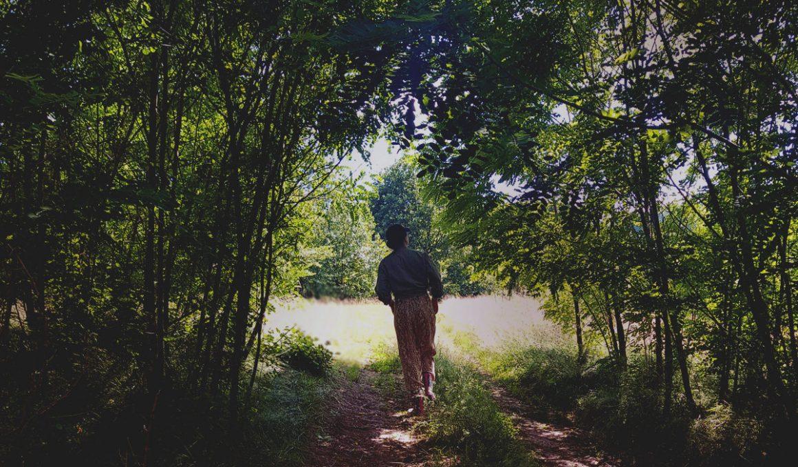 LAUREL - Natural escape - person walking through the woods